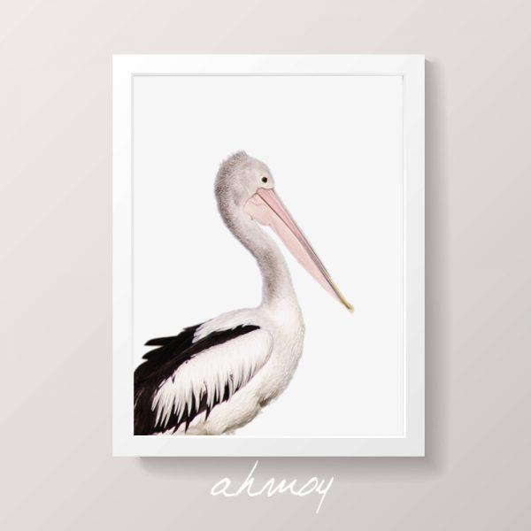 Coastal Pelican Fine Art Photography